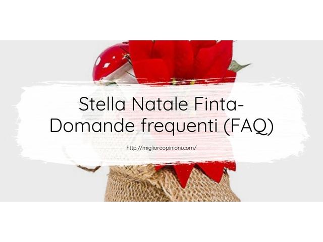 Stella Natale Finta- Domande frequenti (FAQ)