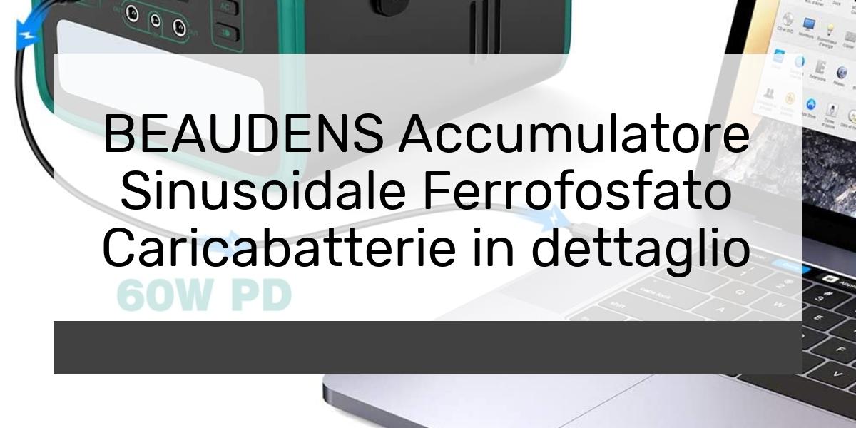 BEAUDENS Accumulatore Sinusoidale Ferrofosfato Caricabatterie in dettaglio