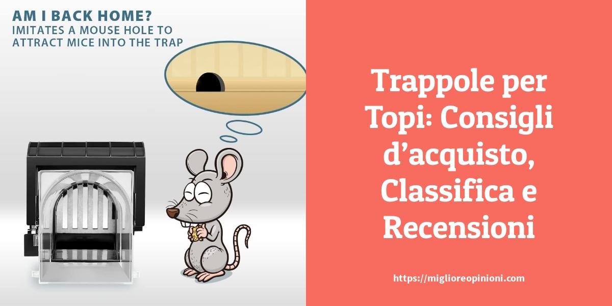 Trappole per Topi Consigli dacquisto Classifica e Recensioni