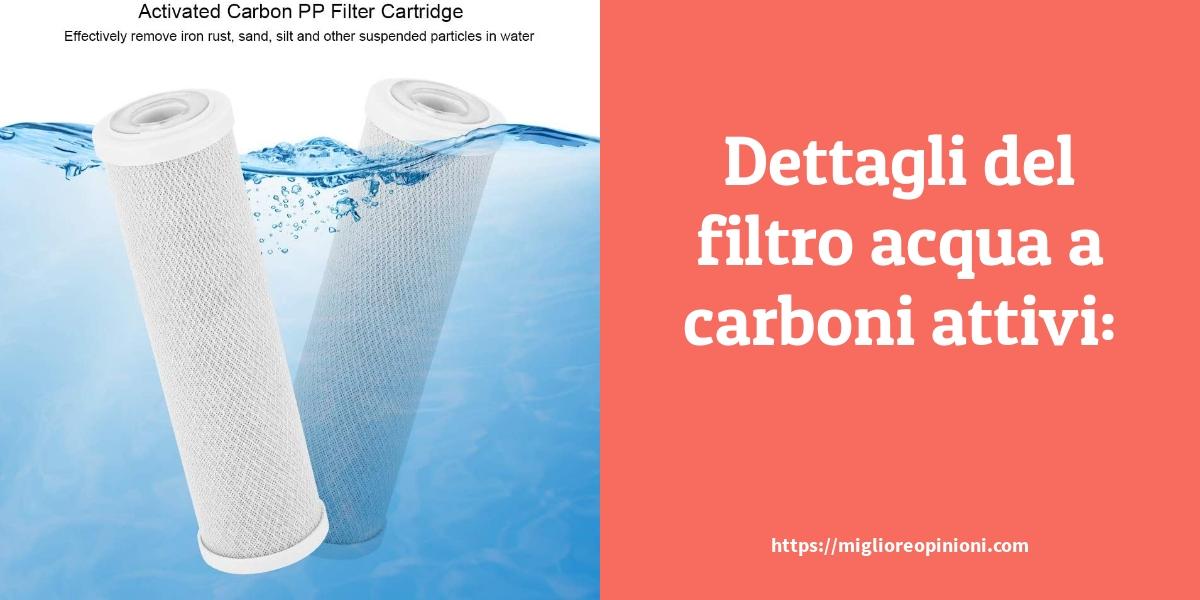 Dettagli del filtro acqua a carboni attivi